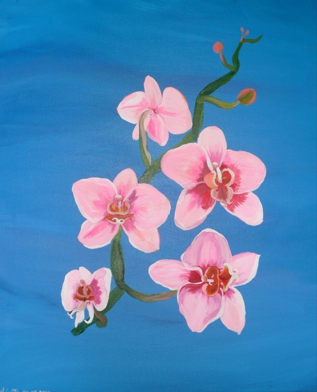 Pink Orchids 60x70
